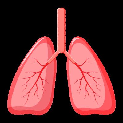 Гимнастика для профилактики пневмонии у лежачих больных